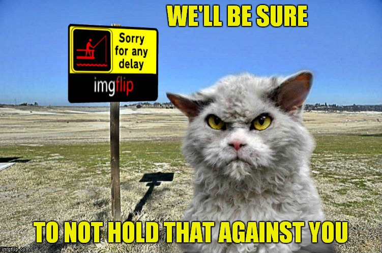 imgflip sorry with pompous cat | WE'LL BE SURE TO NOT HOLD THAT AGAINST YOU | image tagged in imgflip sorry with pompous cat | made w/ Imgflip meme maker
