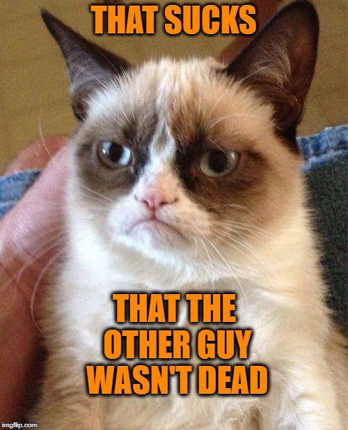 Grumpy Cat Meme | THAT SUCKS THAT THE OTHER GUY WASN'T DEAD | image tagged in memes,grumpy cat | made w/ Imgflip meme maker