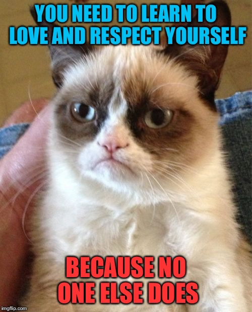 Damn cat | YOU NEED TO LEARN TO LOVE AND RESPECT YOURSELF BECAUSE NO ONE ELSE DOES | image tagged in memes,grumpy cat,love yourself | made w/ Imgflip meme maker