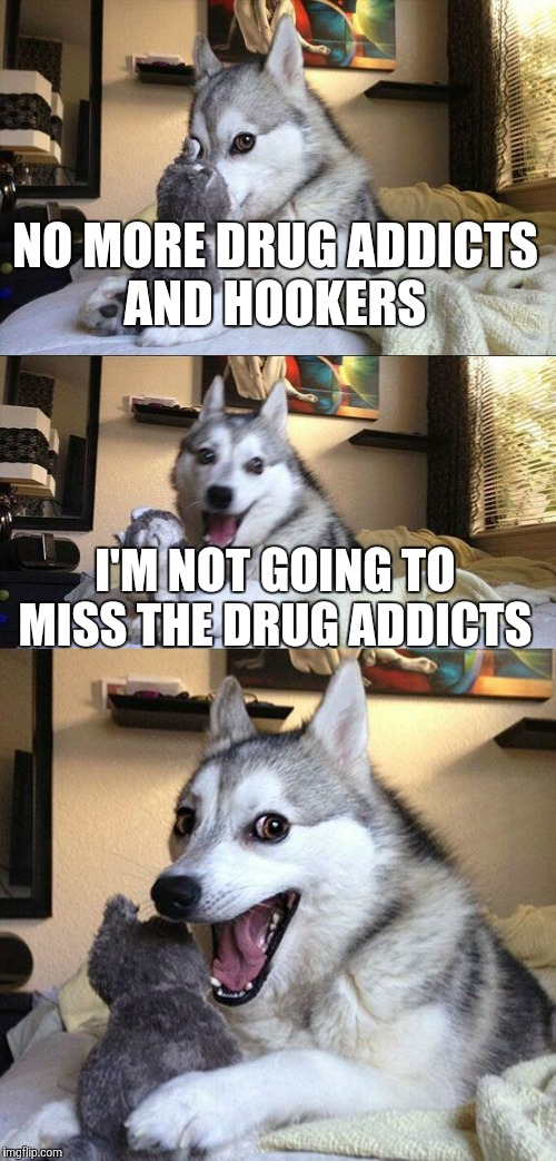 Bad Pun Dog Meme | NO MORE DRUG ADDICTS AND HOOKERS I'M NOT GOING TO MISS THE DRUG ADDICTS | image tagged in memes,bad pun dog | made w/ Imgflip meme maker