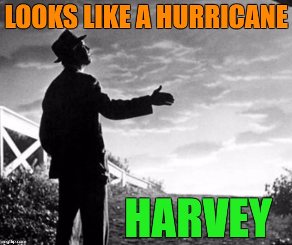 1uqybc image tagged in hurricane harvey,memes,movies,weather,funny,bad