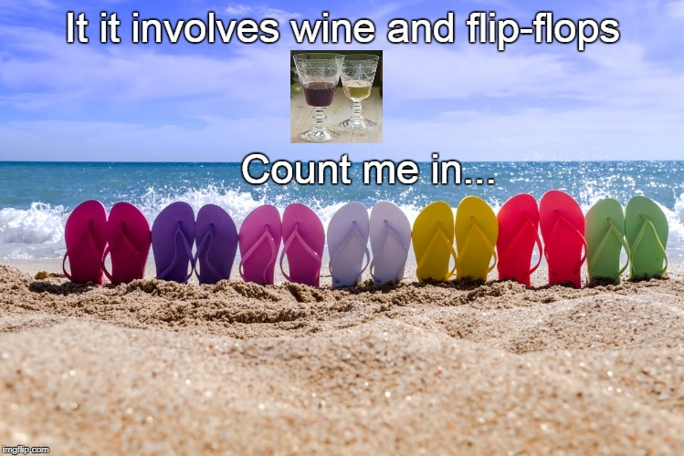 It it involves wine and flip-flops Count me in... | image tagged in wine,flip flops | made w/ Imgflip meme maker