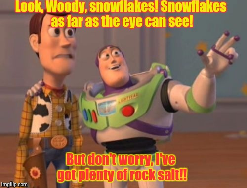 X, X Everywhere Meme | Look, Woody, snowflakes! Snowflakes as far as the eye can see! But don't worry, I've got plenty of rock salt!! | image tagged in memes,x,x everywhere,x x everywhere | made w/ Imgflip meme maker