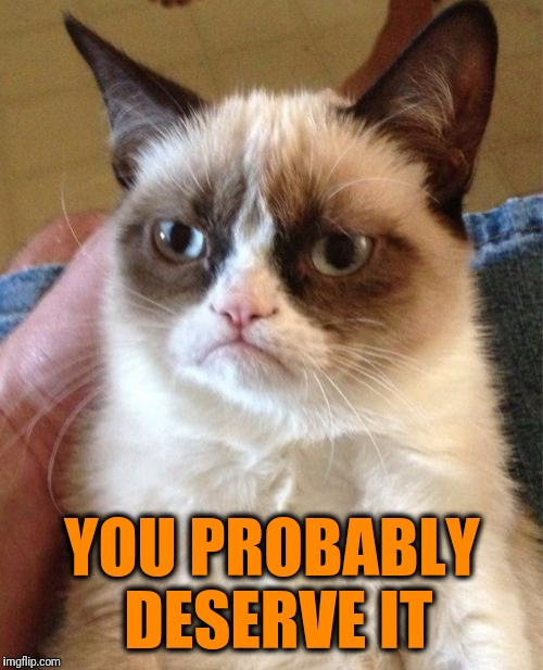 Grumpy Cat Meme | YOU PROBABLY DESERVE IT | image tagged in memes,grumpy cat | made w/ Imgflip meme maker