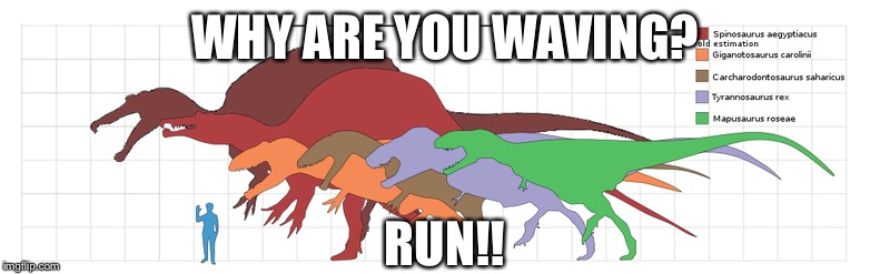 WHY ARE YOU WAVING? RUN!! | image tagged in dinosaurs,waving,lol | made w/ Imgflip meme maker