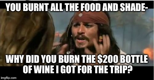 Why Is The Rum Gone | YOU BURNT ALL THE FOOD AND SHADE- WHY DID YOU BURN THE $200 BOTTLE OF WINE I GOT FOR THE TRIP? | image tagged in memes,why is the rum gone | made w/ Imgflip meme maker