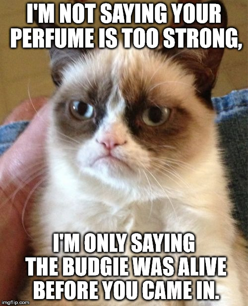 Bye bye budgie | I'M NOT SAYING YOUR PERFUME IS TOO STRONG, I'M ONLY SAYING THE BUDGIE WAS ALIVE BEFORE YOU CAME IN. | image tagged in memes,grumpy cat,budgie,perfume,stinky perfume,too strong | made w/ Imgflip meme maker