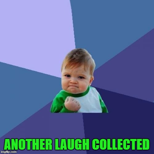 Success Kid Meme | ANOTHER LAUGH COLLECTED | image tagged in memes,success kid | made w/ Imgflip meme maker