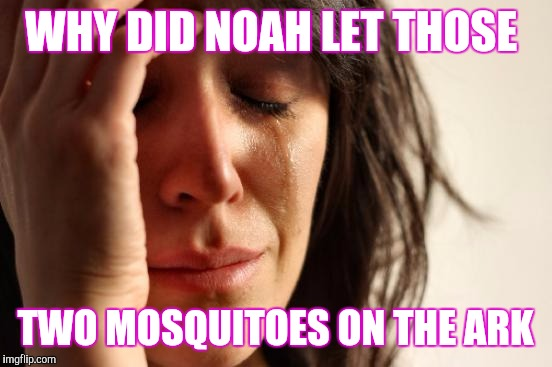 First World Problems Meme | WHY DID NOAH LET THOSE TWO MOSQUITOES ON THE ARK | image tagged in memes,first world problems | made w/ Imgflip meme maker