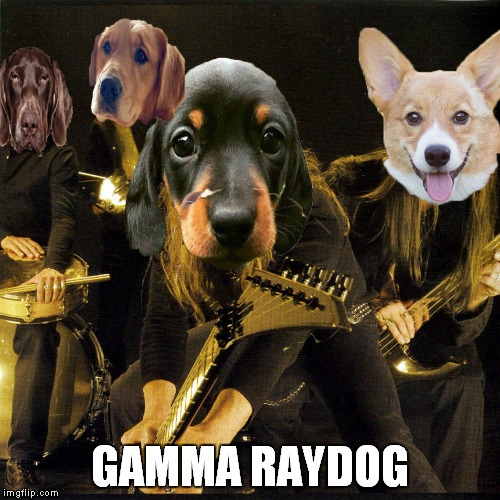 Dedicated to one of my favourite memers and one of my favourite bands ever! | GAMMA RAYDOG | image tagged in raydog,heavy metal,power metal,dogs,animals,memes | made w/ Imgflip meme maker