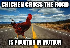 CHICKEN CROSS THE ROAD IS POULTRY IN MOTION | made w/ Imgflip meme maker