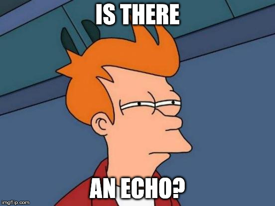 Futurama Fry Meme | IS THERE AN ECHO? | image tagged in memes,futurama fry | made w/ Imgflip meme maker