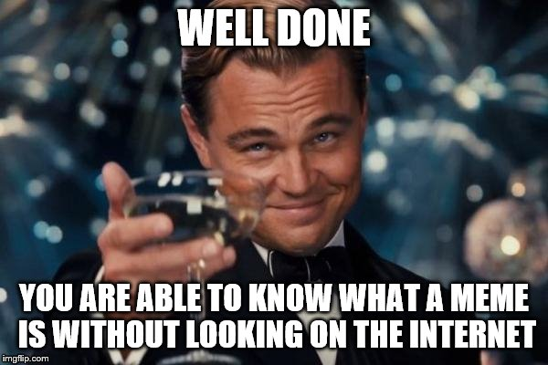 Leonardo Dicaprio Cheers Meme | WELL DONE YOU ARE ABLE TO KNOW WHAT A MEME IS WITHOUT LOOKING ON THE INTERNET | image tagged in memes,leonardo dicaprio cheers | made w/ Imgflip meme maker