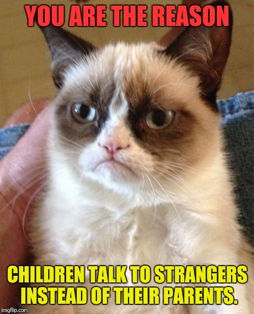 Grumpy Cat Meme | YOU ARE THE REASON CHILDREN TALK TO STRANGERS INSTEAD OF THEIR PARENTS. | image tagged in memes,grumpy cat | made w/ Imgflip meme maker