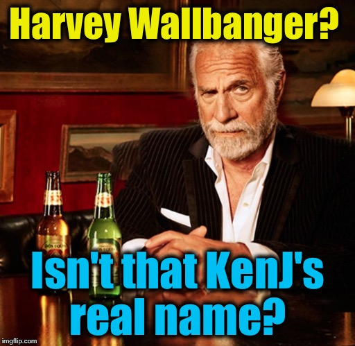 Harvey Wallbanger? Isn't that KenJ's real name? | made w/ Imgflip meme maker