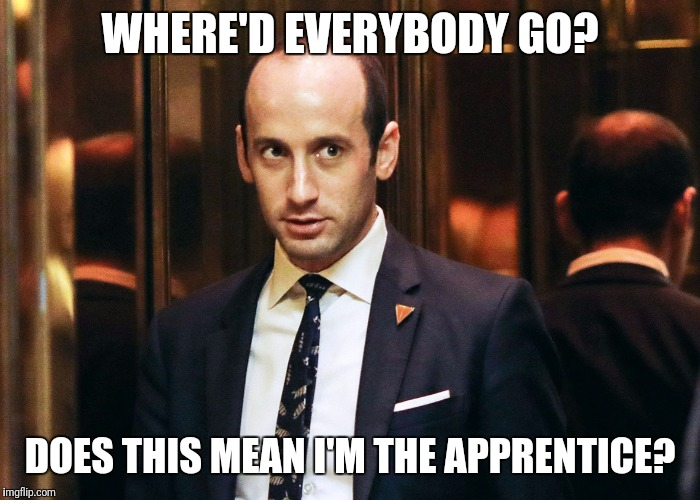 stephen miller |  WHERE'D EVERYBODY GO? DOES THIS MEAN I'M THE APPRENTICE? | image tagged in stephen miller,memes,reince priebus,anthony scaramucci,steve bannon,gorka | made w/ Imgflip meme maker