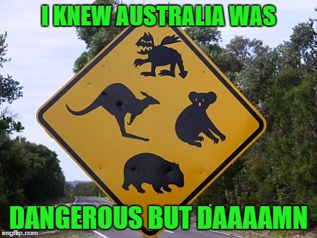 Who knows what you'll find in The Outback...LOL | I KNEW AUSTRALIA WAS DANGEROUS BUT DAAAAMN | image tagged in outback,memes,funny signs,signs,funny,dragon | made w/ Imgflip meme maker