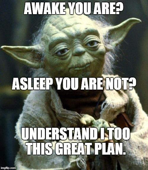 Star Wars Yoda Meme | AWAKE YOU ARE? ASLEEP YOU ARE NOT? UNDERSTAND I TOO THIS GREAT PLAN. | image tagged in memes,star wars yoda | made w/ Imgflip meme maker
