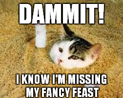 DAMMIT! I KNOW I'M MISSING MY FANCY FEAST | made w/ Imgflip meme maker