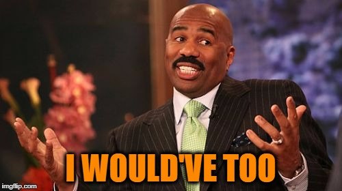 Steve Harvey Meme | I WOULD'VE TOO | image tagged in memes,steve harvey | made w/ Imgflip meme maker