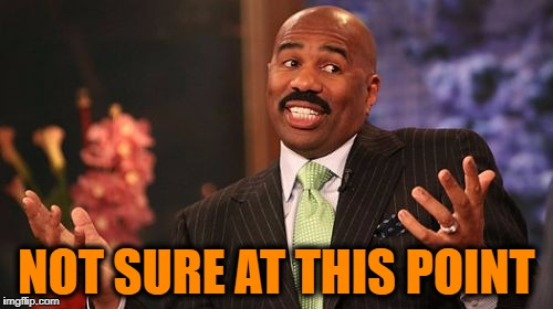 Steve Harvey Meme | NOT SURE AT THIS POINT | image tagged in memes,steve harvey | made w/ Imgflip meme maker