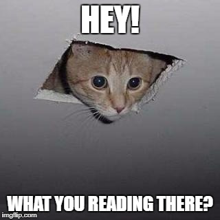 Ceiling Cat Meme | HEY! WHAT YOU READING THERE? | image tagged in memes,ceiling cat | made w/ Imgflip meme maker