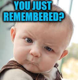 Skeptical Baby Meme | YOU JUST REMEMBERED? | image tagged in memes,skeptical baby | made w/ Imgflip meme maker