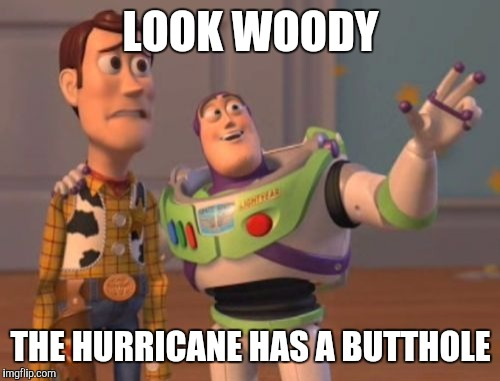 X, X Everywhere Meme | LOOK WOODY THE HURRICANE HAS A BUTTHOLE | image tagged in memes,x x everywhere | made w/ Imgflip meme maker