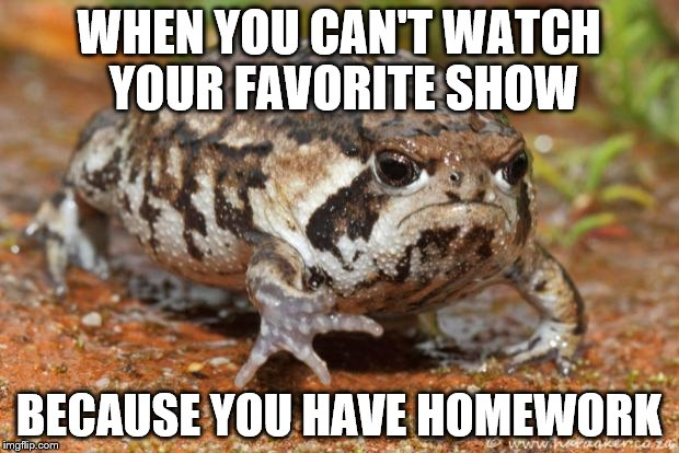Grumpy Toad | WHEN YOU CAN'T WATCH YOUR FAVORITE SHOW BECAUSE YOU HAVE HOMEWORK | image tagged in memes,grumpy toad | made w/ Imgflip meme maker