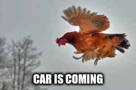 CAR IS COMING | made w/ Imgflip meme maker