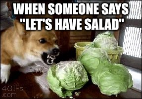 "lettuce | WHEN SOMEONE SAYS ""LET'S HAVE SALAD"" 