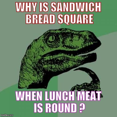 Philosoraptor Meme | WHY IS SANDWICH BREAD SQUARE WHEN LUNCH MEAT IS ROUND ? | image tagged in memes,philosoraptor | made w/ Imgflip meme maker