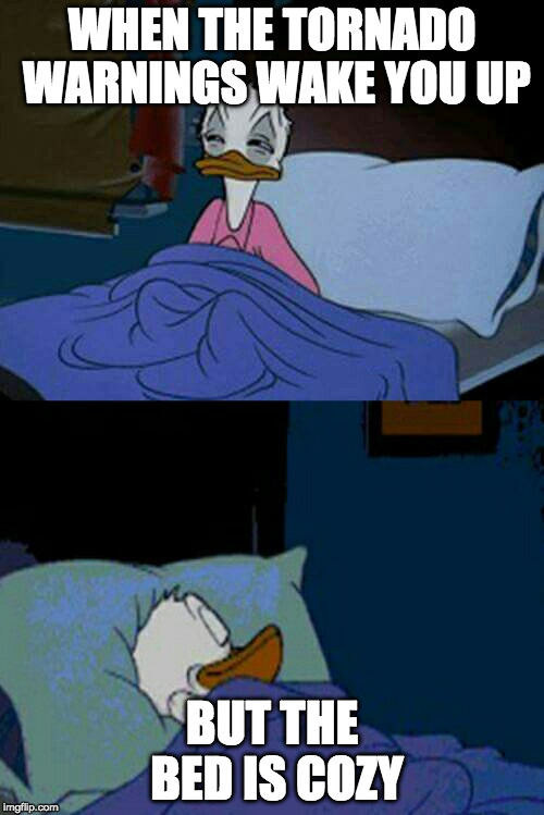Me. All weekend. | WHEN THE TORNADO WARNINGS WAKE YOU UP BUT THE BED IS COZY | image tagged in sleepy donald duck in bed,iwanttobebacon,iwanttobebaconcom,hurricane harvey,tornado | made w/ Imgflip meme maker