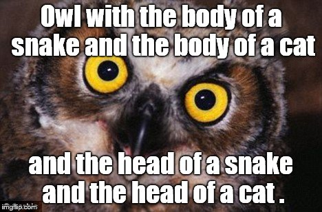 Owl with the body of a snake and the body of a cat and the head of a snake and the head of a cat . | made w/ Imgflip meme maker