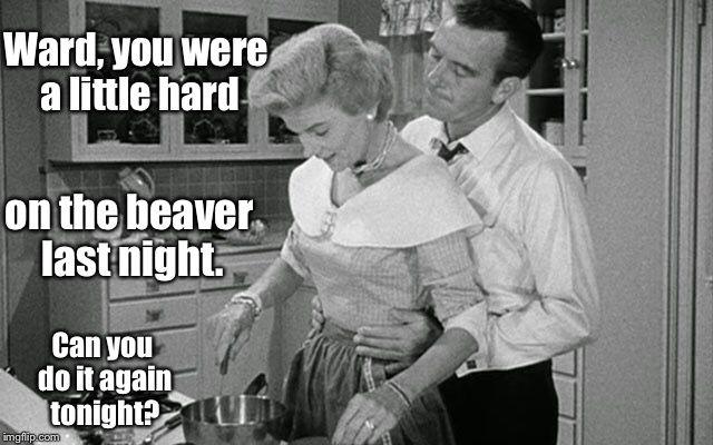 Ward, you were a little hard on the beaver last night. Can you do it again tonight? | image tagged in memes,leave it to beaver,june cleaver,ward cleaver,funny memes | made w/ Imgflip meme maker
