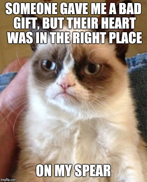 Grumpy Cat Meme | SOMEONE GAVE ME A BAD GIFT, BUT THEIR HEART WAS IN THE RIGHT PLACE ON MY SPEAR | image tagged in memes,grumpy cat | made w/ Imgflip meme maker