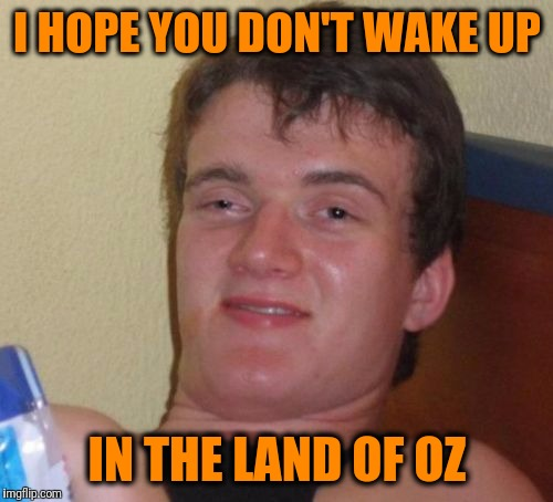 10 Guy Meme | I HOPE YOU DON'T WAKE UP IN THE LAND OF OZ | image tagged in memes,10 guy | made w/ Imgflip meme maker