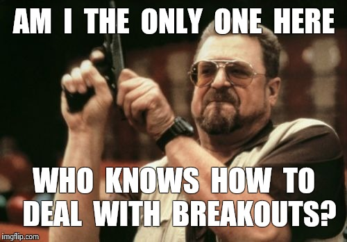 Am I The Only One Around Here Meme | AM  I  THE  ONLY  ONE  HERE WHO  KNOWS  HOW  TO  DEAL  WITH  BREAKOUTS? | image tagged in memes,am i the only one around here | made w/ Imgflip meme maker