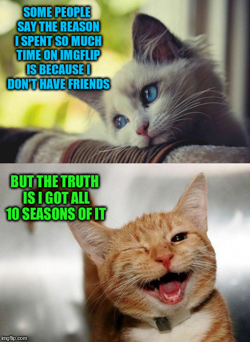 SOME PEOPLE SAY THE REASON I SPENT SO MUCH TIME ON IMGFLIP IS BECAUSE I DON'T HAVE FRIENDS BUT THE TRUTH IS I GOT ALL 10 SEASONS OF IT | image tagged in sad happy cat,memes,funny,friends | made w/ Imgflip meme maker