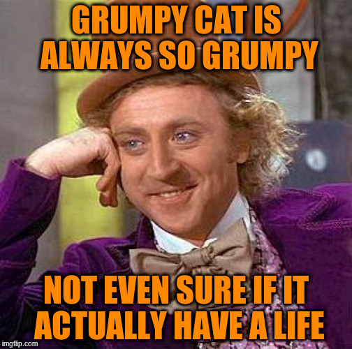 Creepy Condescending Wonka Meme | GRUMPY CAT IS ALWAYS SO GRUMPY NOT EVEN SURE IF IT ACTUALLY HAVE A LIFE | image tagged in memes,creepy condescending wonka | made w/ Imgflip meme maker