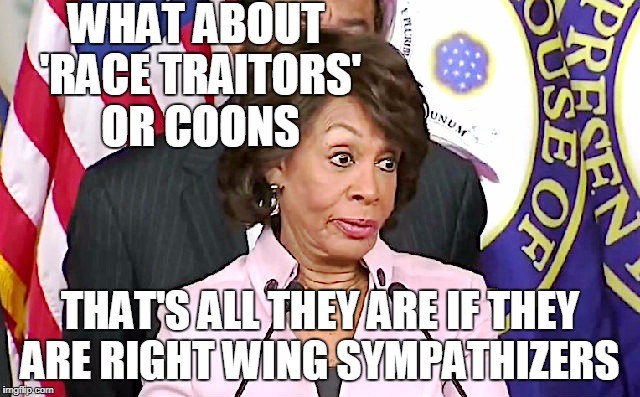 maxine answers questions | WHAT ABOUT 'RACE TRAITORS' OR COONS THAT'S ALL THEY ARE IF THEY ARE RIGHT WING SYMPATHIZERS | image tagged in maxine answers questions | made w/ Imgflip meme maker