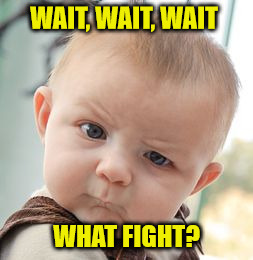 Skeptical Baby Meme | WAIT, WAIT, WAIT WHAT FIGHT? | image tagged in memes,skeptical baby | made w/ Imgflip meme maker