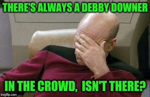 Captain Picard Facepalm Meme | THERE'S ALWAYS A DEBBY DOWNER IN THE CROWD,  ISN'T THERE? | image tagged in memes,captain picard facepalm | made w/ Imgflip meme maker