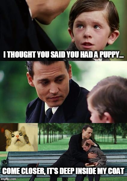 Stranger, Danger! ...Too Much? | I THOUGHT YOU SAID YOU HAD A PUPPY... COME CLOSER, IT'S DEEP INSIDE MY COAT | image tagged in memes,finding neverland,creepy,creepy guy,funny,it just fit the image | made w/ Imgflip meme maker