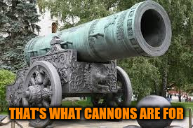 THAT'S WHAT CANNONS ARE FOR | made w/ Imgflip meme maker