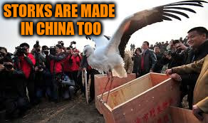 STORKS ARE MADE IN CHINA TOO | made w/ Imgflip meme maker