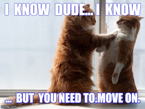Sincere Cats | I  KNOW  DUDE... I  KNOW ...  BUT  YOU NEED TO.MOVE ON. | image tagged in sincere cats | made w/ Imgflip meme maker