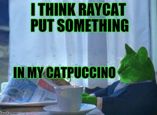 I Should Buy a Boat RayCat | I THINK RAYCAT PUT SOMETHING IN MY CATPUCCINO | image tagged in funny,i should buy a boat cat,animals,memes | made w/ Imgflip meme maker