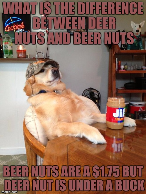Redneck Dog  | WHAT IS THE DIFFERENCE BETWEEN DEER NUTS AND BEER NUTS BEER NUTS ARE A $1.75 BUT DEER NUT IS UNDER A BUCK | image tagged in redneck dog,memes,funny,nuts | made w/ Imgflip meme maker