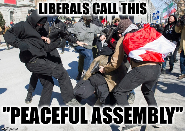 "ANTIFA & the Left are the new fascist | LIBERALS CALL THIS ""PEACEFUL ASSEMBLY"" 